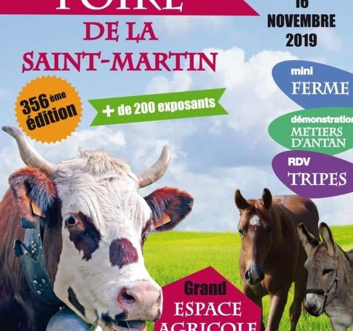 Foire de la saint Martin - Bons En Chablais
