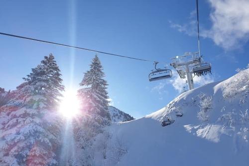 sondage du ski club