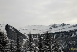 Sortie Les Carroz - Dimanche 4 février 2018